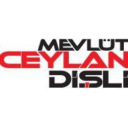 Mevlüt Ceylan Metal Dişli Msk. Oto. Nak. San. Tic. Ltd. Şti.